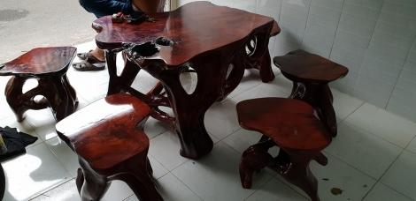 bàn ghế gốc cây
